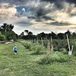 5 Kid-Friendly Activities in Butler County, Ohio