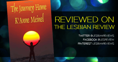 The Journey Home by K'Anne Meinel