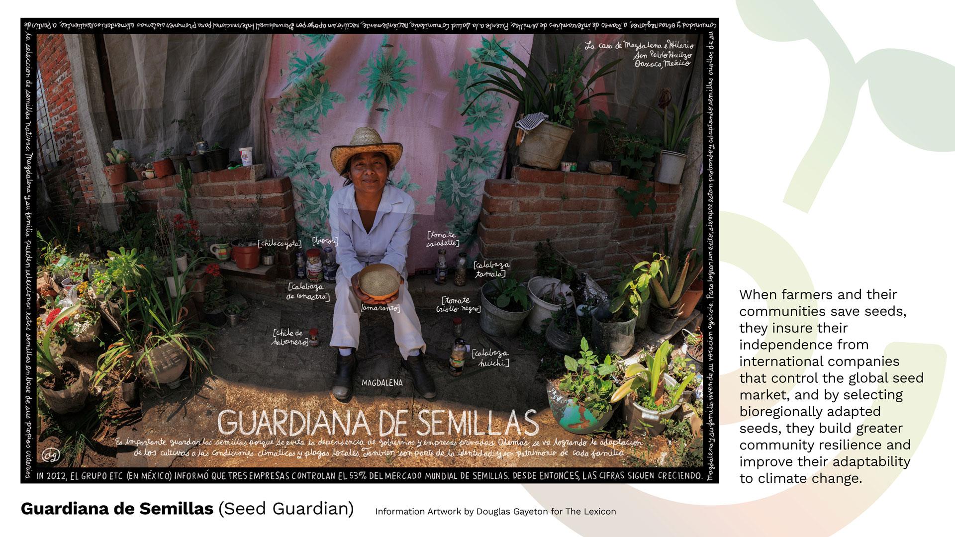 REAWAKENED8_4_SEED-GUARDIAN_GAYETON