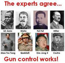 gun-control-works