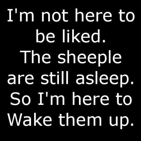 sheeple-wake-up[1]