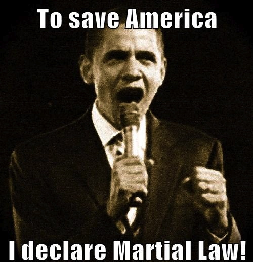 obama-overthrow-plot-widens-as-us-martial-law-fears-grow
