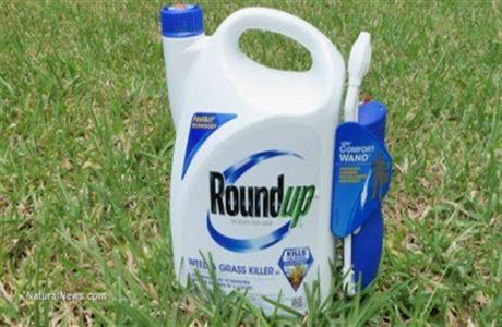 RoundUp-Herbicide-460
