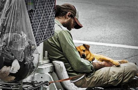 homeless-dog-9-1.jpg460