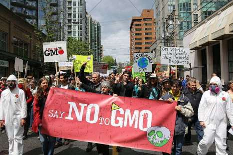 Sa no to GMO