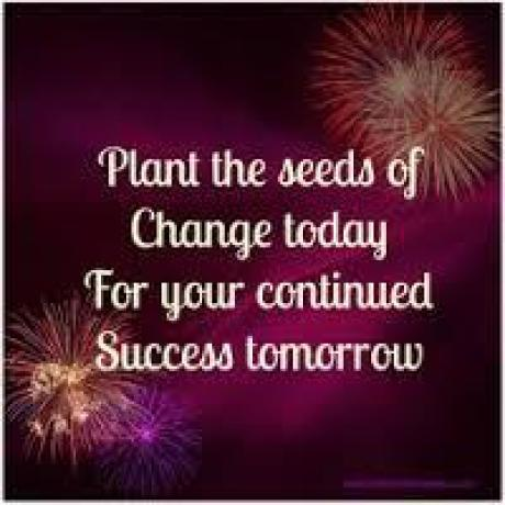 Plant the seeds
