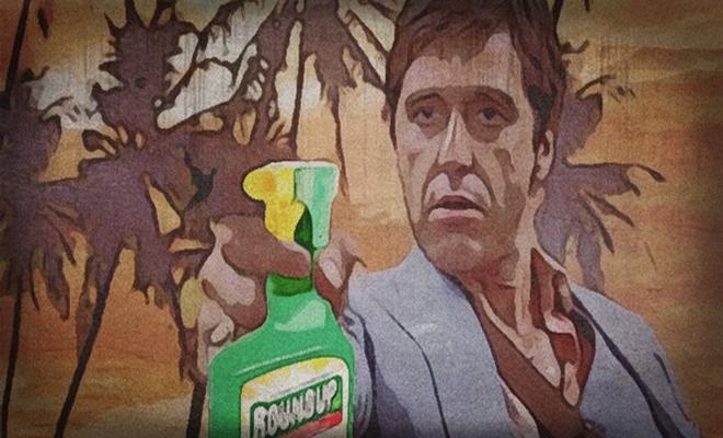 Pacino roundup 4 22 16