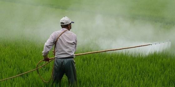 man spraying pesticides 4 11 16