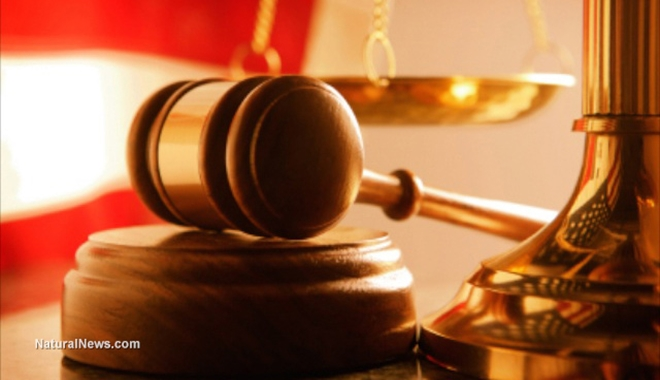 Close-Up-Judges-Mallet