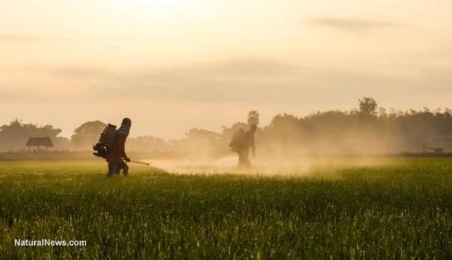 Chemicals-Pesticides-GMO-Spray