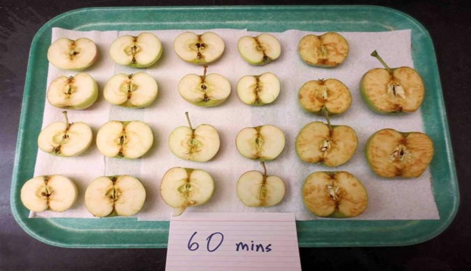 apples-browing