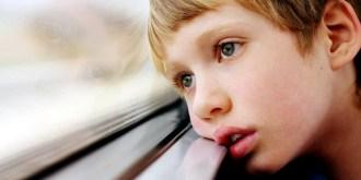 child-aut-window-insert