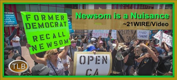 Newsom recall pickets feat 2 13 21