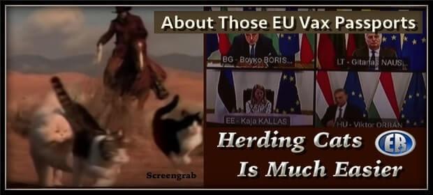 EUVaxpasscats-min