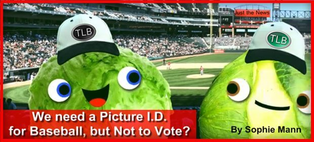 Voter ID corps JtN feat 4 6 21