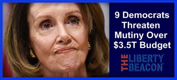 Dems Threaten Mutiny ZH feat 8 13 21