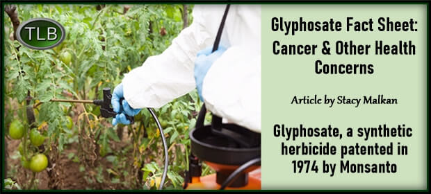 Glyphosate Fact Sheet – Cancer & Other Health Concerns – FI 10 10 21-min