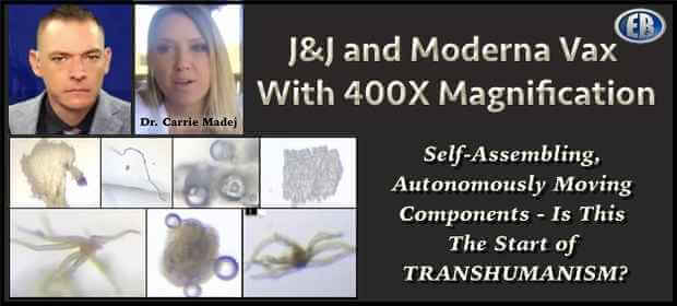 Dr. Carrie Madej Talks to Stew Peters: Are These Vaccines the Beginning of Transhumanism? [VIDEO] | The Paradise