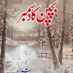 Bachpan Ka December By Hashim Nadeem PDF Free