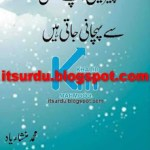 Cheezain Apne Taluq Se Pehchani Jati Hain by Muhammad Mansha Yaad