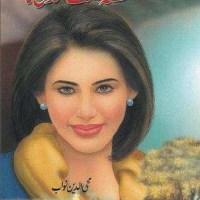 Qissa Nisf Sadi Ka By Mohiuddin Nawab Pdf