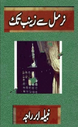 Nirmal Se Zainab Tak Novel By Nabeela Abar Raja Pdf