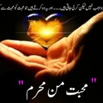 Mohabbat Man Mehram Novel By Sumaira Hameed Pdf