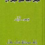 Kahin Deep Jale Kahin Dil Novel By Qaisra Hayat Pdf Free