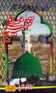 Tazeem e Mustafa Urdu Pdf By Syed Irtaza Ali Kirmani