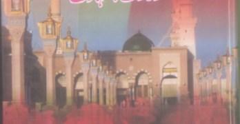 Seerat Imam Hassan Urdu By Abdul Khaliq Tawakli Pdf