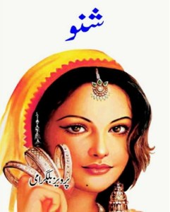 Shanno Novel By Pervez Bilgrami Pdf Download