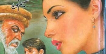 Sarbaz Novel By Shamim Naveed Pdf Download