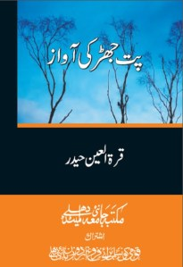 Patjhar Ki Awaz By Quratulain Haider Pdf Download