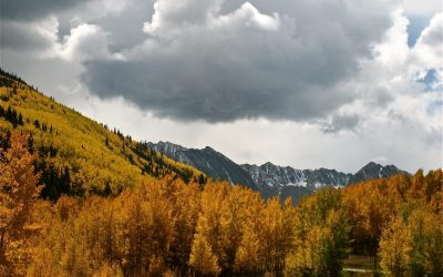 Aspen Golden Leaf Half Trail Marathon
