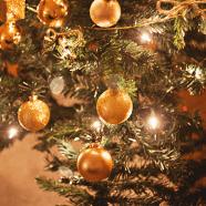 Onze schitterende kerstboom