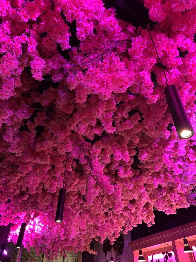 MK Nightlife- Best Bars and Clubs in Milton Keynes - Blossom Ceiling Blossom Room Bar milton Keynes