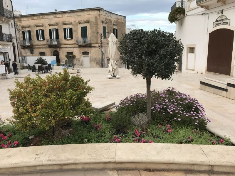 Puglia road trip exploring pretty scenes and Flowers in Ostuni