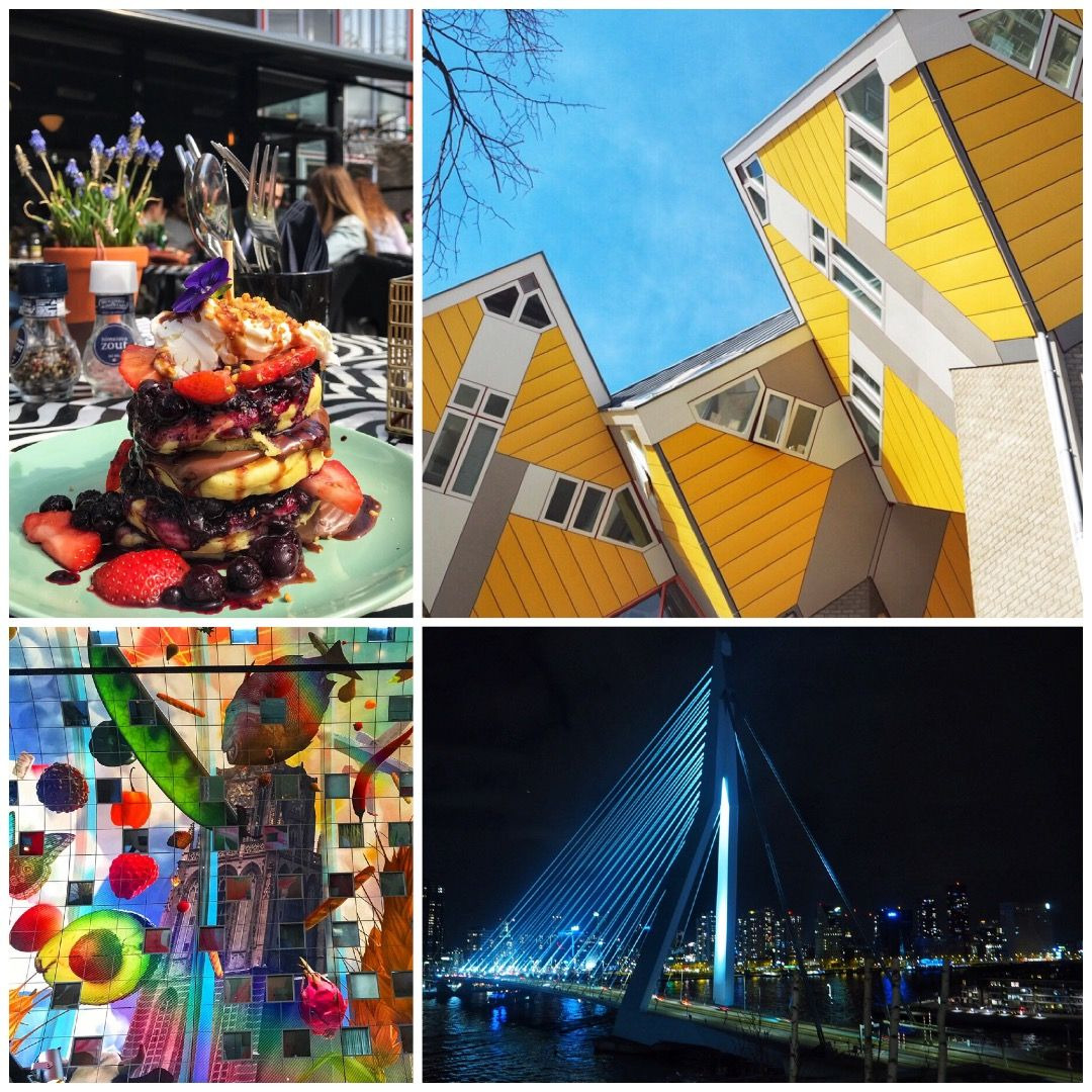 The Best Things to See in 24 hours in Rotterdam