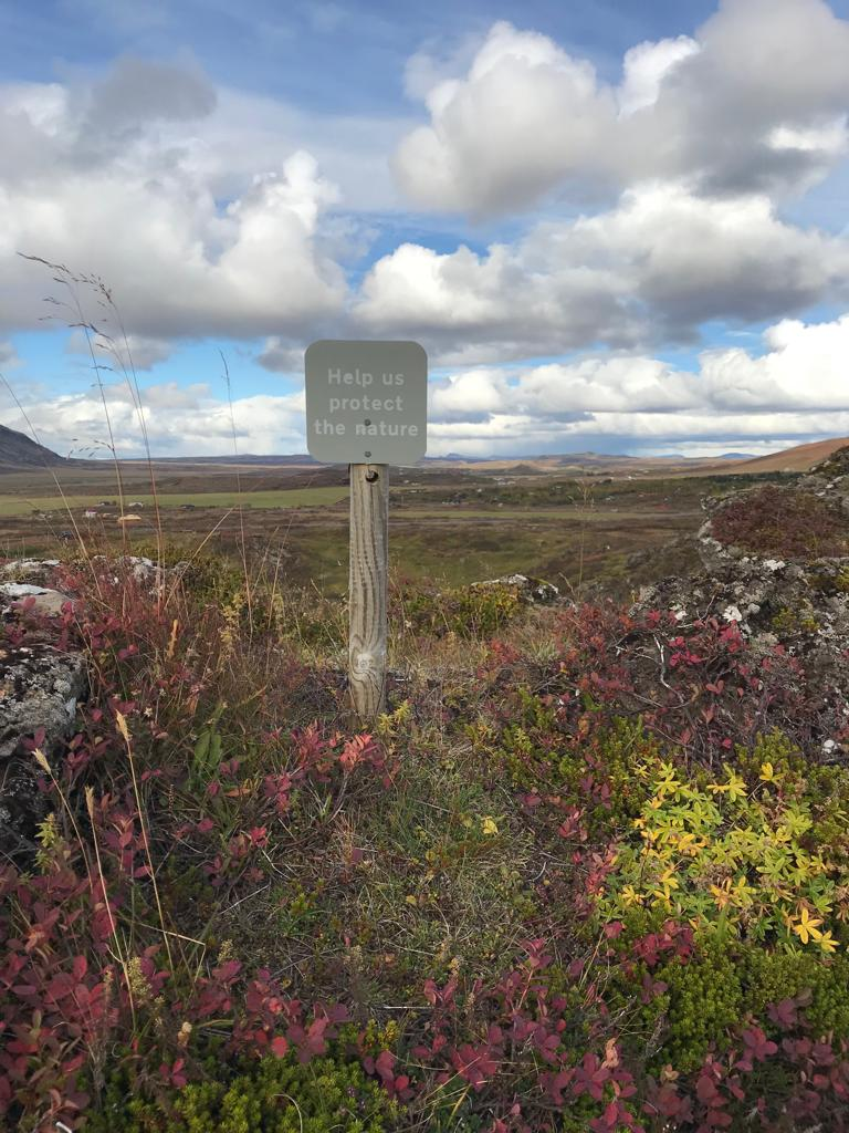 protecting the natural habitat in Iceland