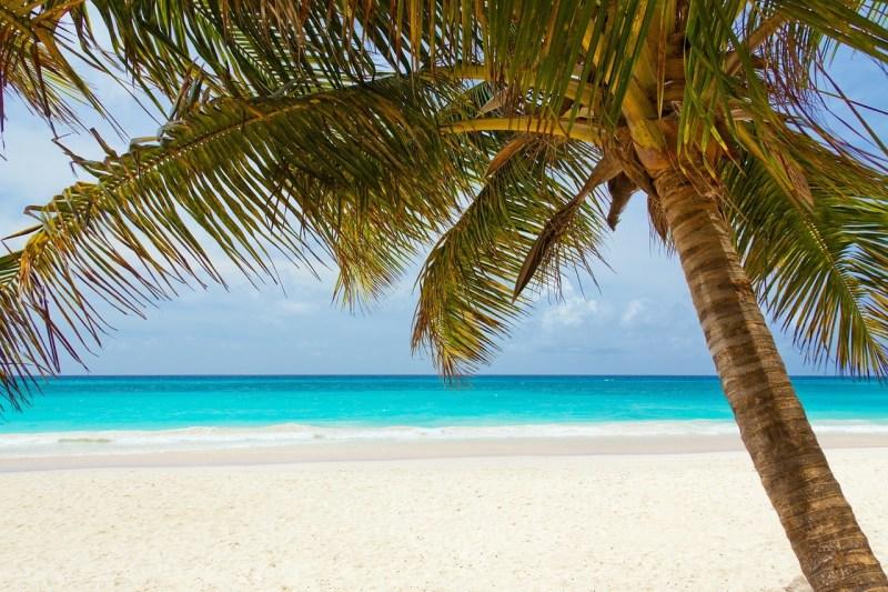 Bimini-Bliss-Life-on-Bahamas-Beach
