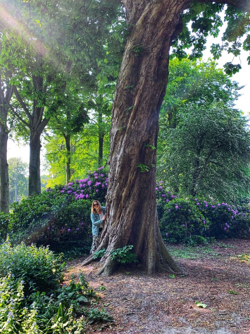 Tree-hugging-and-relaxtion-in-Palace-Gardens-The-Hague