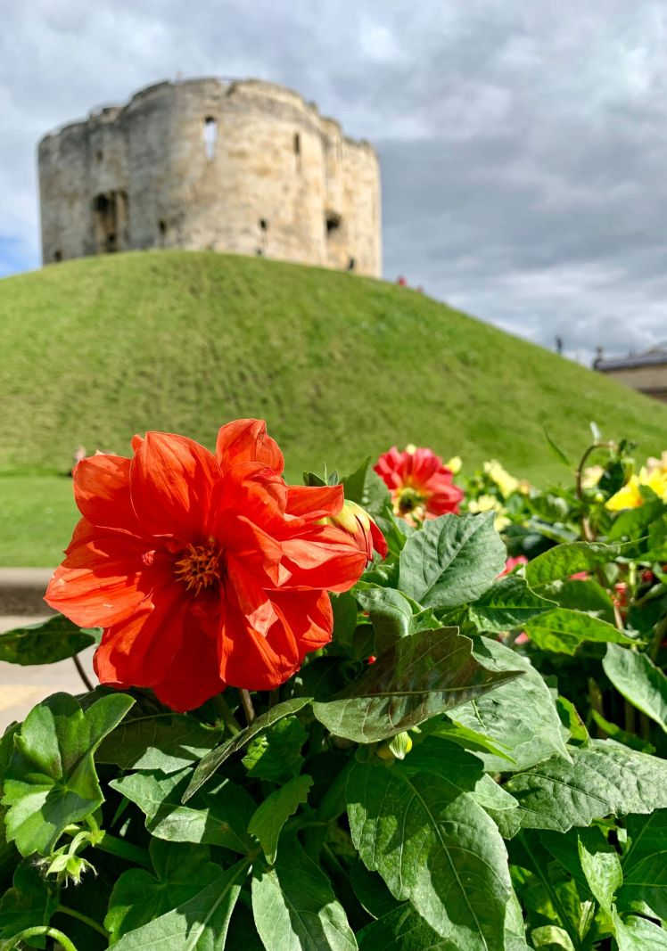 Flower-view-Cliffords-Tower-York