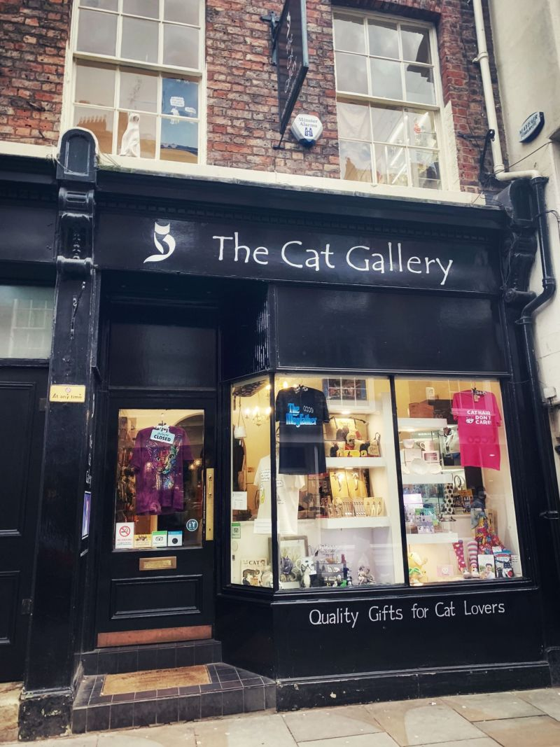 The-Cat-Gallery-York