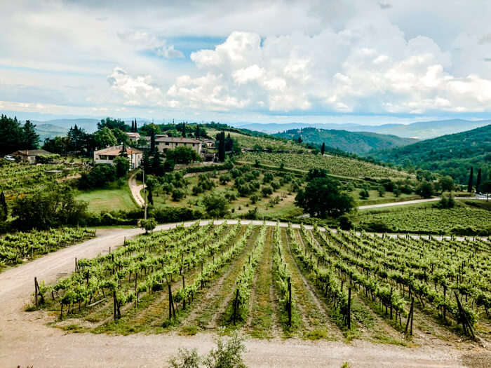 Enjoy wine tasting in Tuscany - Italy travel bucket list ideas