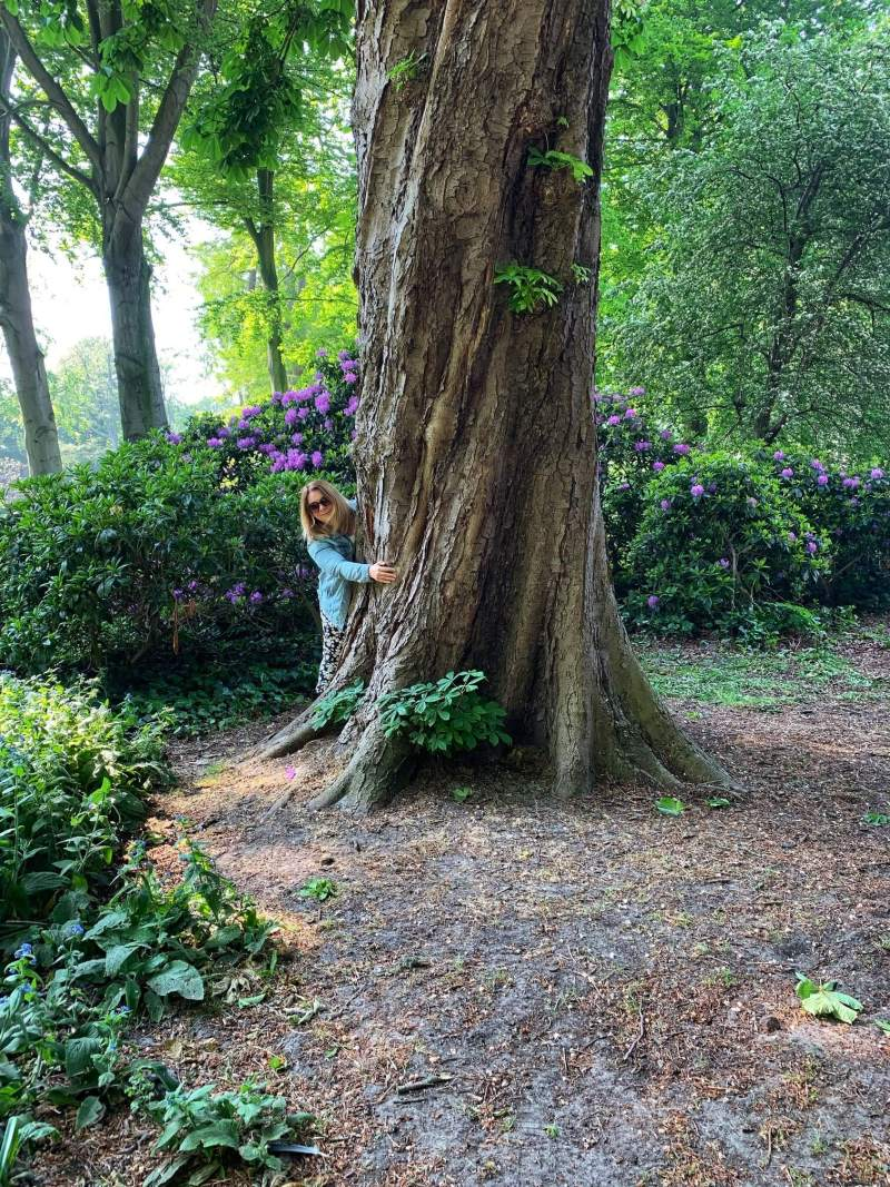 tree_hugging_in_the_hague_-_offset_carbon_emissions