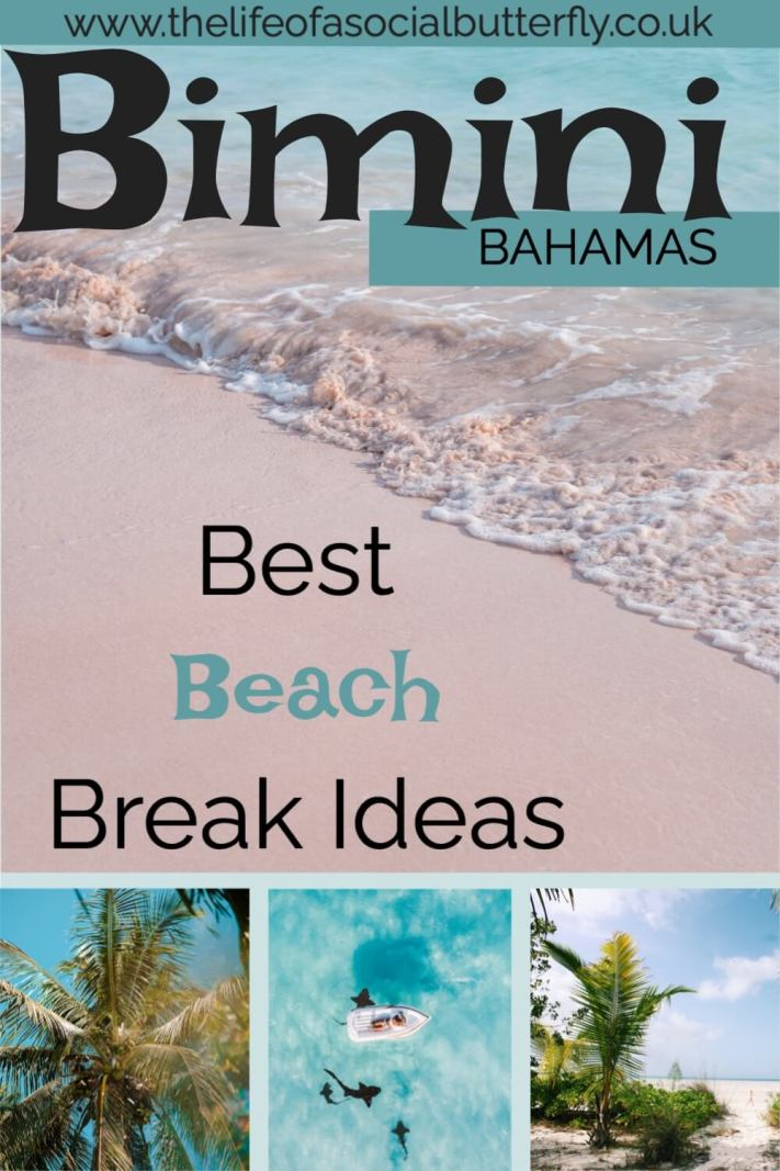 A Bahamas beach break doesn't come more blissful than in Bimini! Whether you want to relax on Bimini's white-sand beaches, swim with wild dolphins or look for the Lost City of Atlantis, there are plenty of things to do in Bimini! Dive into Bimini Bahamas in my blog post - click through to read all about Bimini things to do! #BiminiBliss #CaribbeanIslands