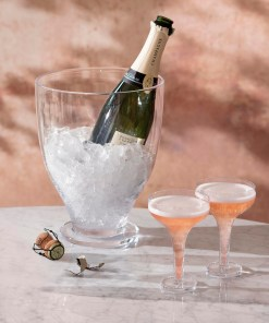 Champagne on ice bucket