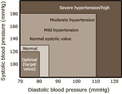 blood pressure on exercise