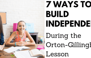 indepdent skills during Orton-Gillingham lesson plans