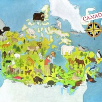 Animals of Canada Illustrated Map